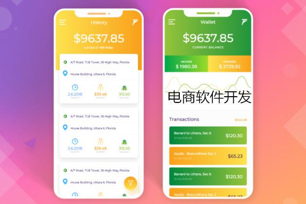 深圳电商软件开发公司|商城定制